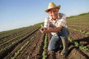 InsureYourCompany.com Celebrates National Farmer's Day!